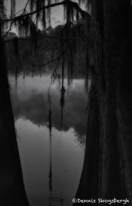 1799 November Morning, Caddo Lake
