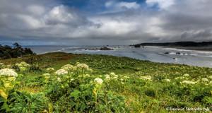 3253 Cape Blanco, Port Oreford, OR
