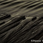 5172 Sand Patterns, Smuggler's Cove, Oregon Coast