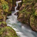 1048 Avalanche Creek, Glacier National Park, MT