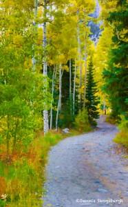 1088 Autumn Colors
