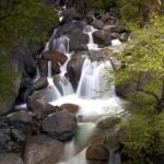 1107 Cascades, Tamarack Creek