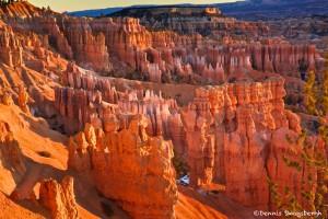 1118 Sunrise, Bryce Canyon National Park, UT