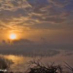 1267 Sunrise, Fog, Hagerman National Wildlife Refuge, TX, First Place Winner - Landscape