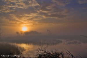 1267 Sunrise, Fog, Hagerman National Wildlife Refuge, TX, First Place Winner - Landscape