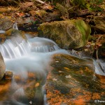 1672 Autumn, Hadlock Brook