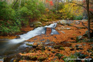 1706 Lynn Camp Prong Cascade with Autumn Color