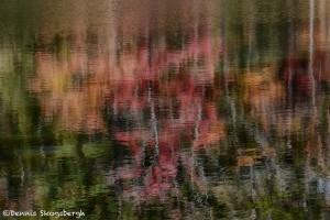1767 Autumn Reflections
