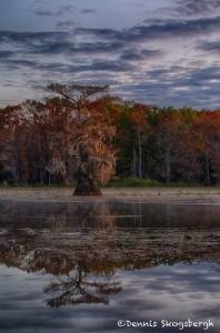 1792 Sunrise, Caddo Lake