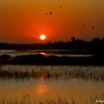1836 Sunrise