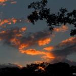 2035 Sunset