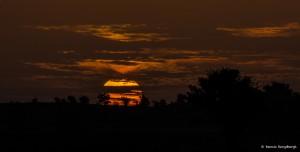 2090 Sunrise