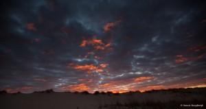 2122 Sunrise