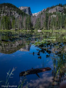 2225 Reflections, Nymph Lake