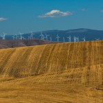 2783 Wind Farm, Wheat Fields, Wasco, Oregon