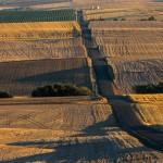 2789 Wheat Fields, Sunset, Wasco, OR