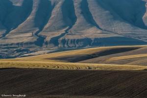 2792 Mountain and Field Terrain. Wasco, OR