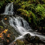 2797 Sheppard's Dell Falls, OR