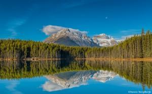 2925 Herbert Lake, Banff National Park, Alberta, Canada