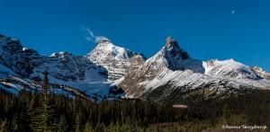 2934 Parker Ridge, Banff National Park, Alberta Canada