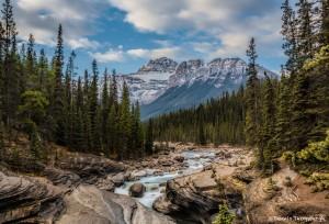 2938 Mistaya Canyon and River, Mt. Saurbach, Alberta Canada