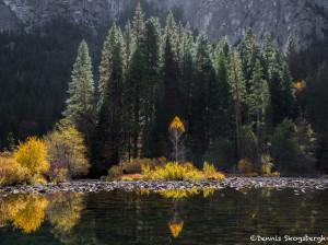 2952 Merced Reflections, November, Yosemite National Park, CA