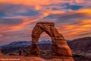2968 Delicate Arch, Arches National Park, UT