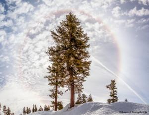 3236 Icebow, Mt. Shasta, CA