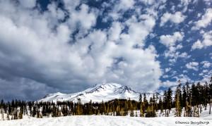 3237 Mt. Shasta, CA
