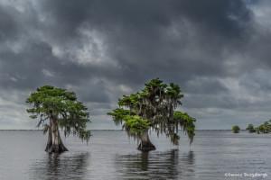 3334 Blue Cypress Lake, Vero Beach, Florida
