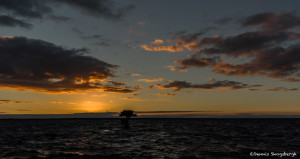 3338 Blue Cypress Lake, Vero Beach, Florida