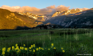 3452 Sunrise, Moraine Park, RMNP