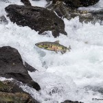 3548 Salmon Run, Juneau, Alaska