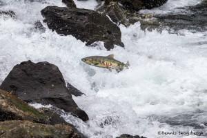 3548 Salmon Run, Juneau, Alaska