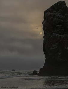 3596 Foggy Moonscape, Seastacks, Cannon Beach, OR