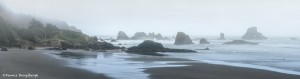 3623 Foggy Indian Beach, Oregon Coast