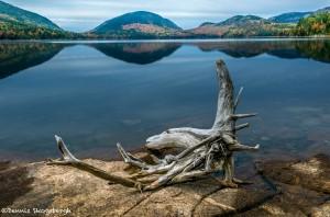 3769 Sunrise, Eagle Lake, Acadia NP, ME