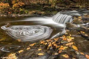 3784 Cascade, October, Ricketts Glen State Park, PA