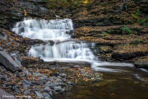3790 Delaware Waterfall, October, Ricketts Glen State Park, PA