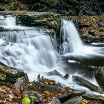 3791 Cayuga Waterfall, Ricketts Glen State Park, PA