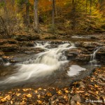 3799 Cascade, October, Ricketts Glen State Park, PA