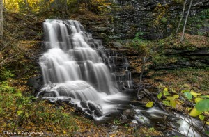 3801 Erie Waterfall, October, Ricketts Glen State Park, PA