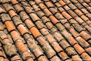 3805 Tile roof, La Plaza Grande, Quito, Ecuador