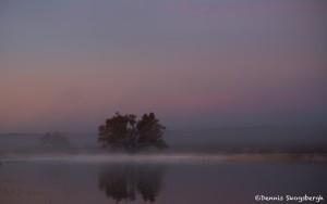 3895 Sunrise, Crane Pond, Bosque del Apache, New Mexico