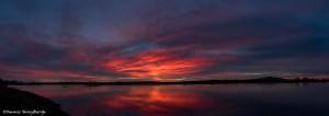 3898 Sunrise, Bosque del Apache, New Mexico
