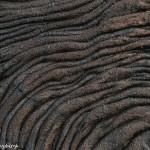 3916 Lava Pattern, Santiago Island, Galapagos