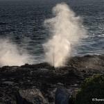 4003 Blowhole at Punta Suarez, Espanola Island, Galapagos