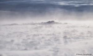 4083 Ground Blizzard, Ontario, Canada