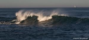 4118 Wave Action, Asilomar Beach, Big Sur, CA