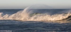 4119 Wave Action, Asilomar Beach, Big Sur, CA